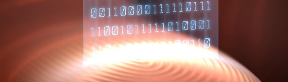 Biometrics EMV