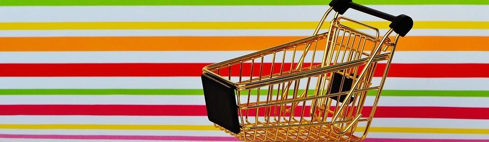 shopping-global-risk-technologies-chargebacks